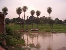 Massacre Ghat, Kanpur (Source: Wikipedia (Sati Chaura Ghat, 2008))